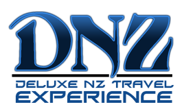 DNZ Travel